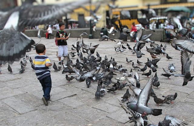 centro da capital do peru lima com crianças catacumbas