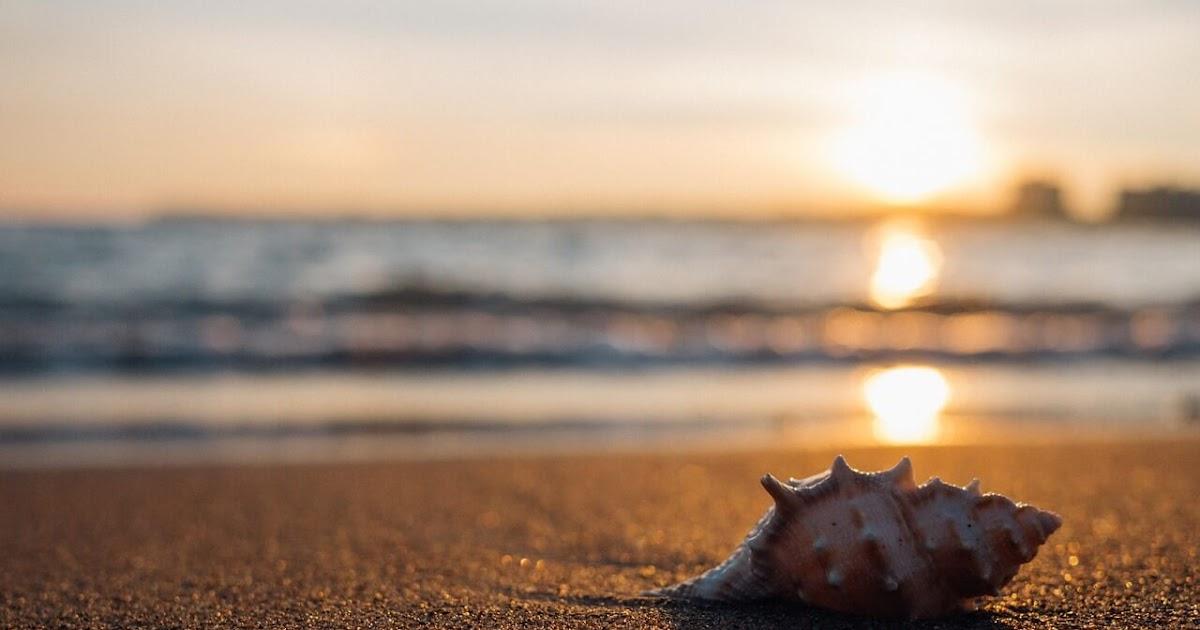 40 Quotes Tentang Pantai Inggris Dan Artinya Untuk Caption Ig Update Update Pengetahuanmu