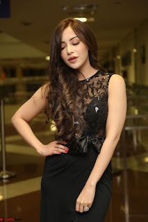 Angela Krislinzki in Transparent Black Gown at Rogue Movie Teaser Launch 1st March 2017 011.JPG