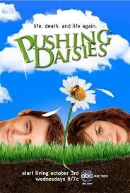 Pushing daisies - foto: divulgação
