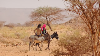 Sudanese women carry for the donkeys