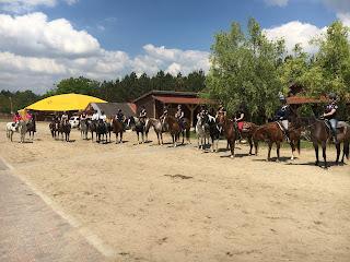 Unkari, El Bronco, lännenratsastus, Riitta Reissaa, Horsexplore