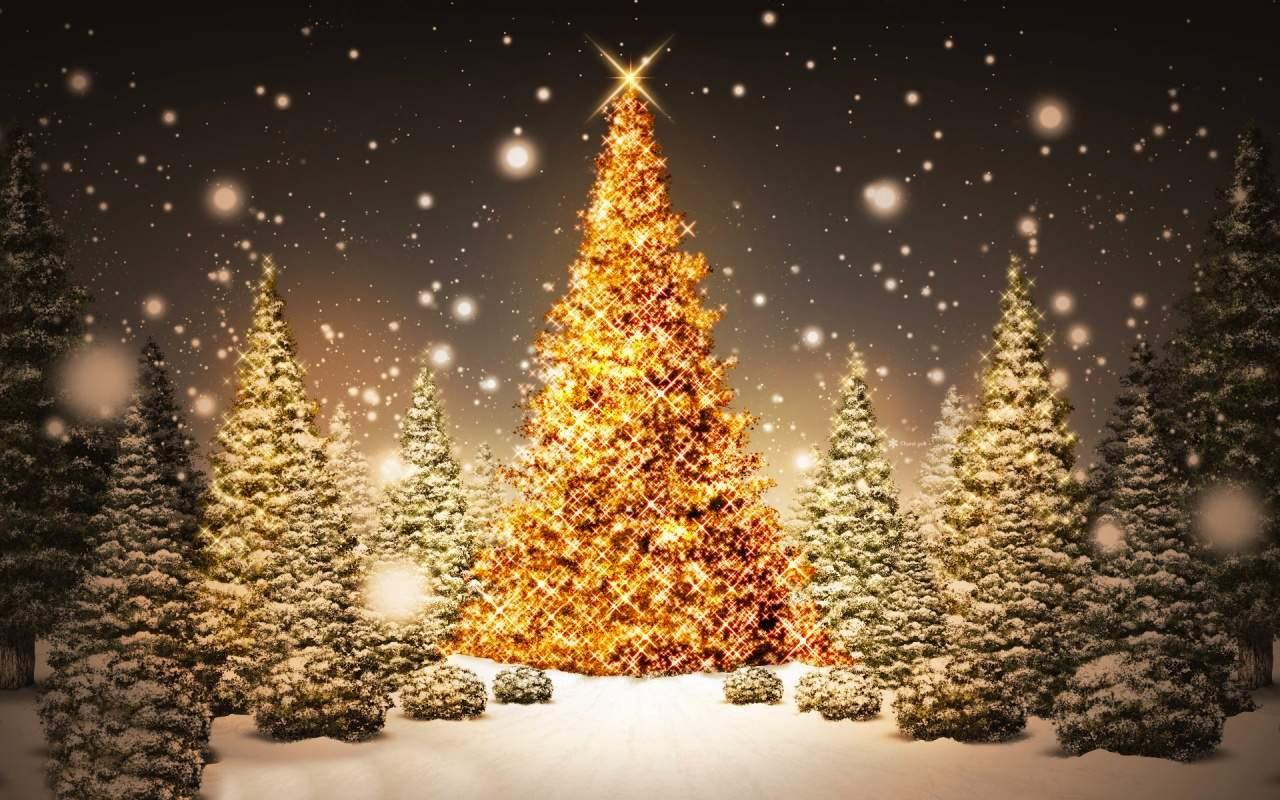 Auguri Di Buon Natale E Felice Anno Nuovo.Nocturnia Buon Natale E Felice Anno Nuovo 2017
