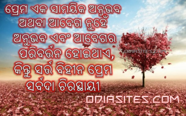 odia love quote scrap sms