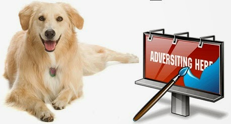Dog Training Collars - Advertise