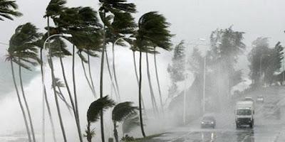 اجتياح عاصفة كبري لنيوزيلندا وتنقطع الكهرباء عن المنازل