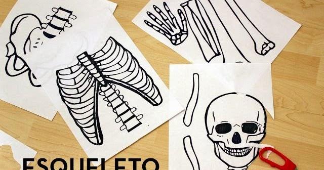 Recursos De Educacion Infantil El Esqueleto