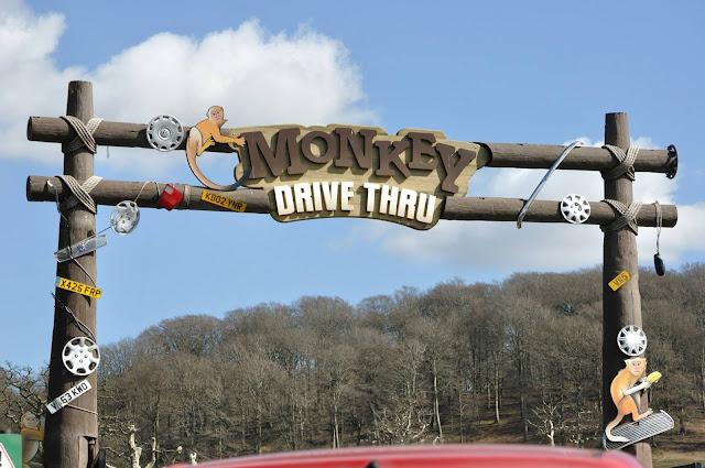 Monkey Drive Thru
