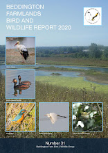 BEDDINGTON FARMLANDS BIRD AND WILDLIFE REPORT 2020
