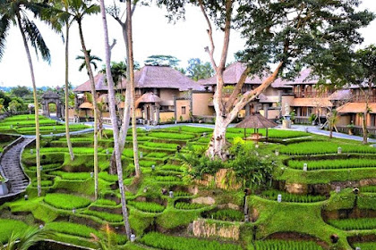 Lima Alasan Berbulan Madu di Kamandalu Resort Ubud, Bali