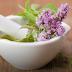 Herbal Medicine And Medicinal Herbs