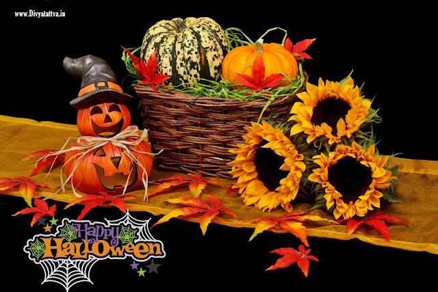 happy halloween wallpaper  halloween wallpaper phone,  scary halloween wallpapers,  halloween wallpaper cute