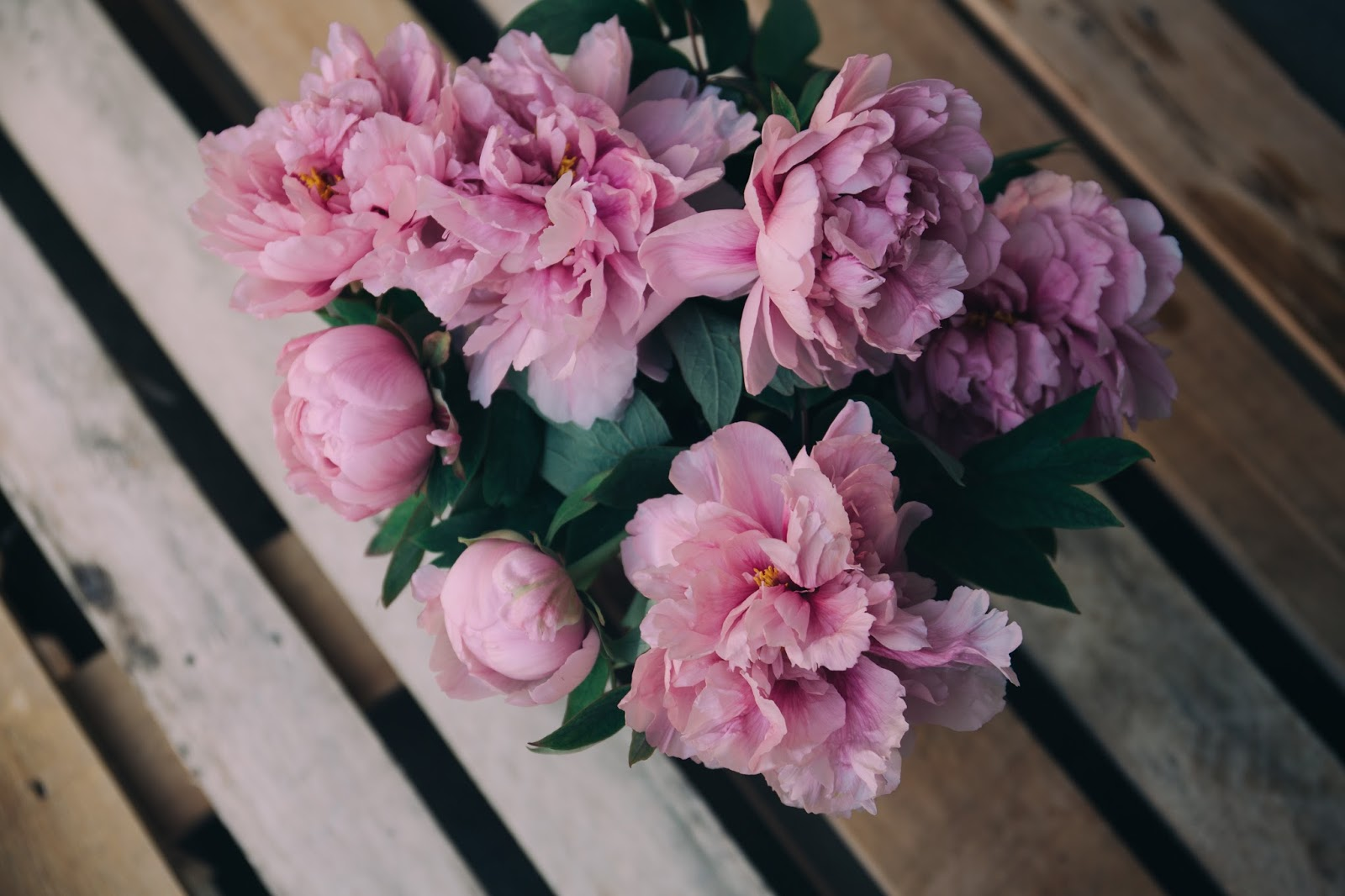 3 ways you can live a happier life, life, happy, happiness, flowers, floral