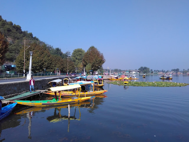 beauty of dal lake