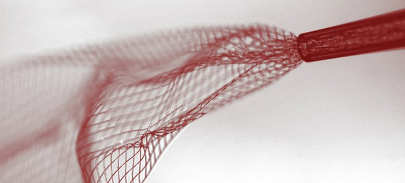 Elon Musk Launches Start-Up to Accelerate Neural Lace Development