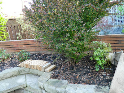 Wychwood Toronto new backyard perennial garden before by Paul Jung Gardening Services--a Toronto Gardening Company