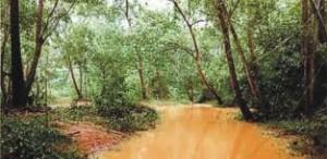 Tanah pencegahan erosi