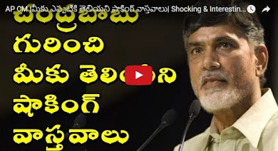AP CM  Shocking & Interesting Facts About Chandrababu naidu