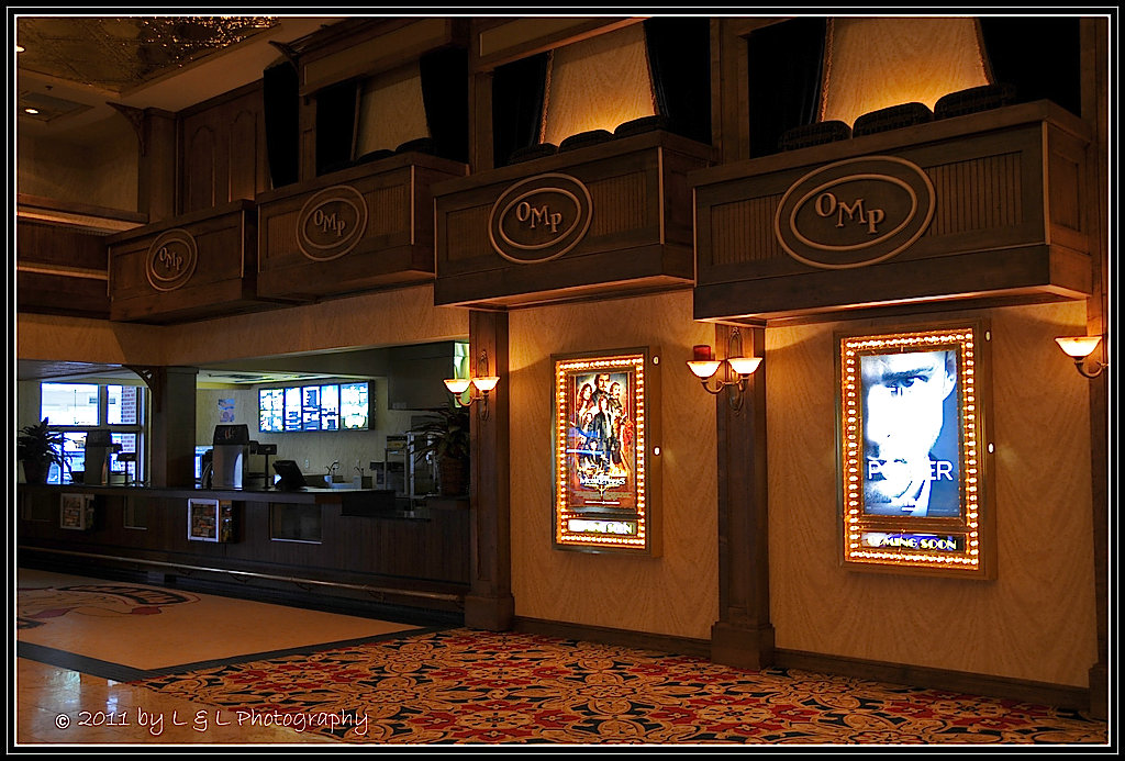Movies playing in the villages florida