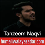 https://www.humaliwalyazadar.com/2019/02/tanzeem-naqvi-noha-ayyam-e-fatima-2019.html