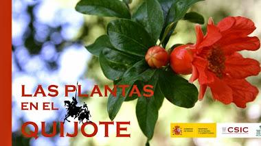 Las Plantas en el Quijote