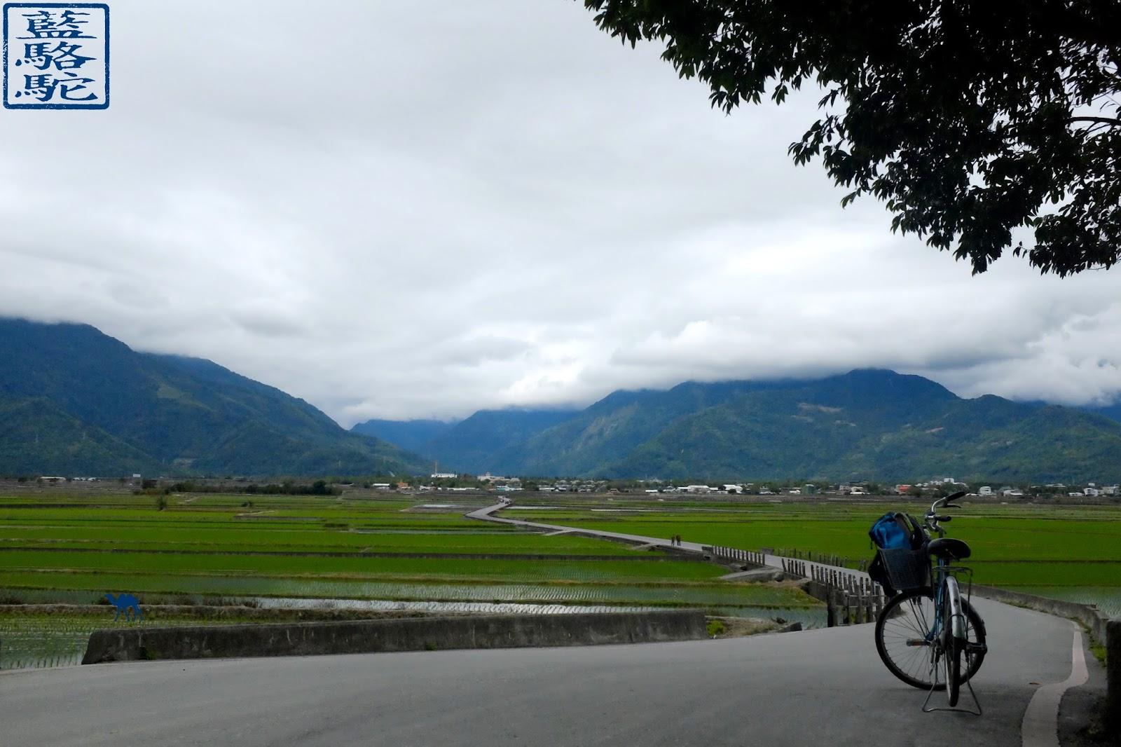 Le Chameau Bleu - ChiShang - Riziere de Taiwan ile de Formose - voyage