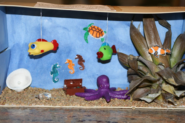 Desert Ecosystem Diorama Project Grade 4 - Year of Clean Water