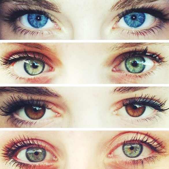 لماذا نمتلك ألوان أعين مختلفة
