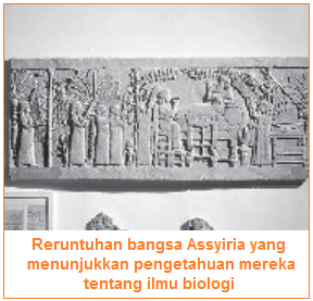 Perkembangan Biologi - Petunjuk dari reruntuhan bangsa Asyiria