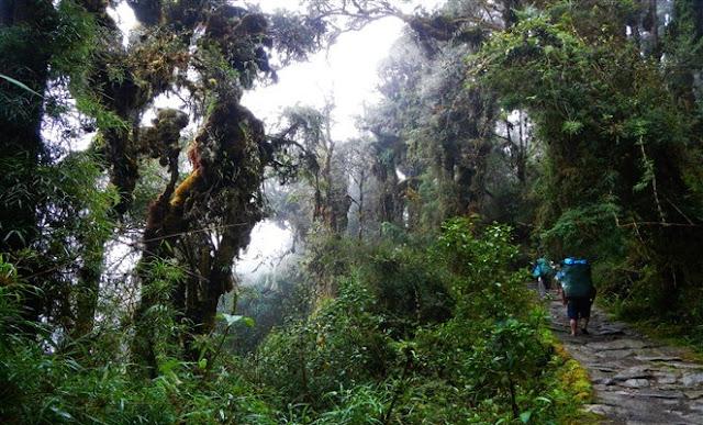 www.viajesyturismo.com.co662x400