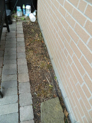 Toronto Fall Cleanup After Don Mills Backyard by Paul Jung Gardening Services--a Toronto Organic Gardener