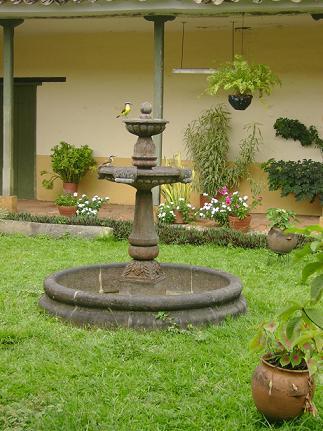 jardines o patios con fuentes decorativas