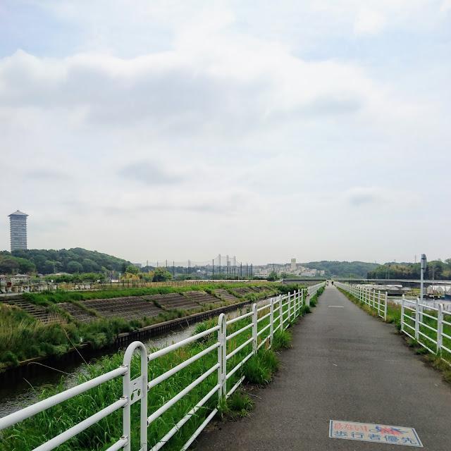 境川自転車道 横浜薬科大のタワー