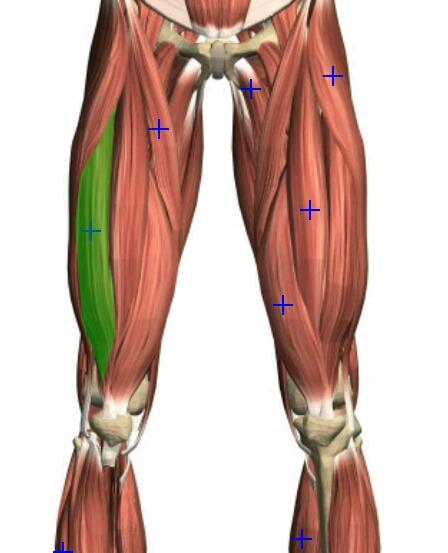 Cara menyembuhkan radang sendi pada lutut