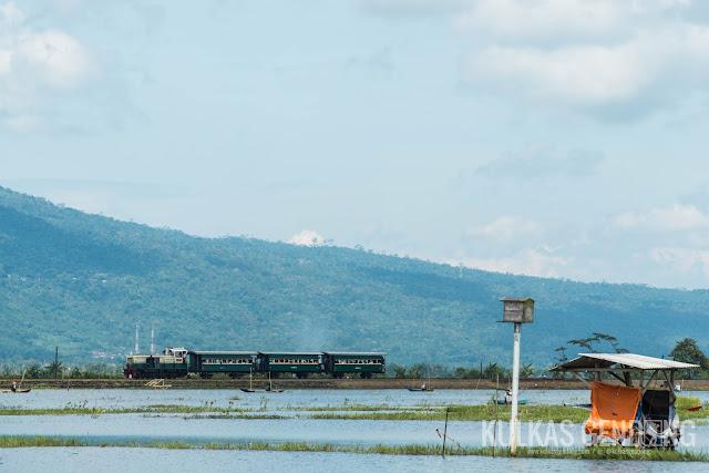 kereta api melewati rawa pening