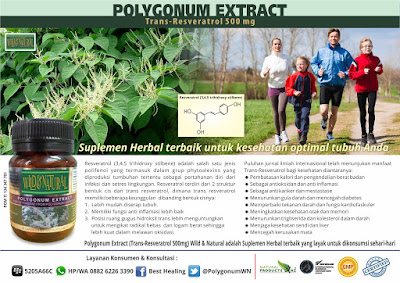 Kelebihan Resveratrol sebagai Suplemen Herbal Terbaik