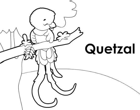 La Cartografa Dibujo De Quetzal Para Colorear