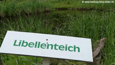 Libellenteich