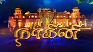 Nagini Serial 08-11-2016 Sun Tv Serial