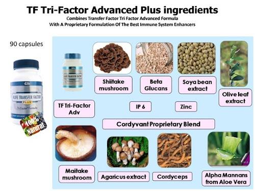 foto 4Life TF Plus Advanced Ingredients