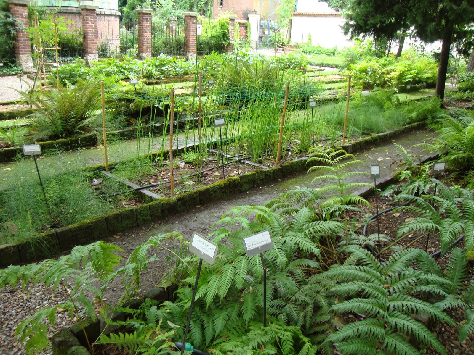 Un piccolo giardino in citt una visita all 39 orto botanico for Giardino botanico milano