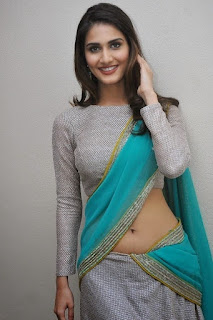 Vaani Kapoor in Saree