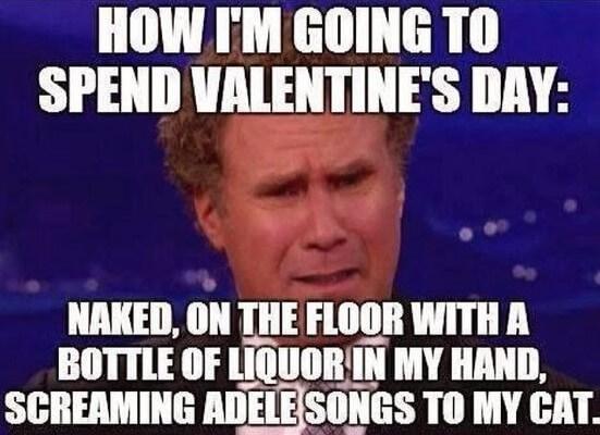valentines%2Bsingle%2Bmeme valentine's day card memes,valentines day memes funny, funny
