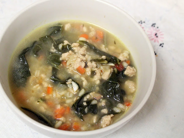 Anonymous soup on the fly (Turkey Barley and Greens Soup)