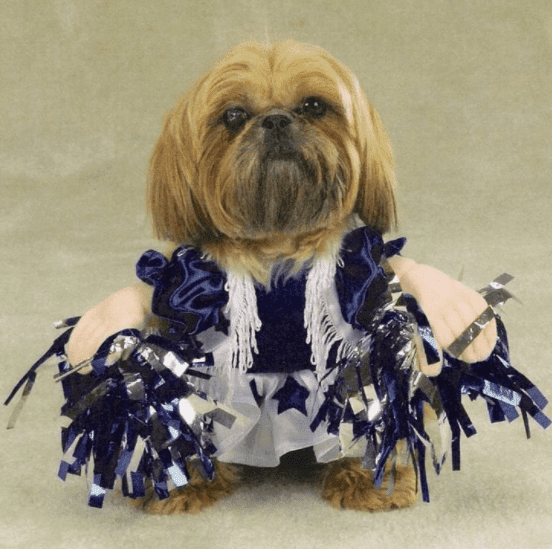 National Puppy Day Dresses