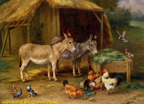 edgar hunt yağlı boya hayvan resimleri
