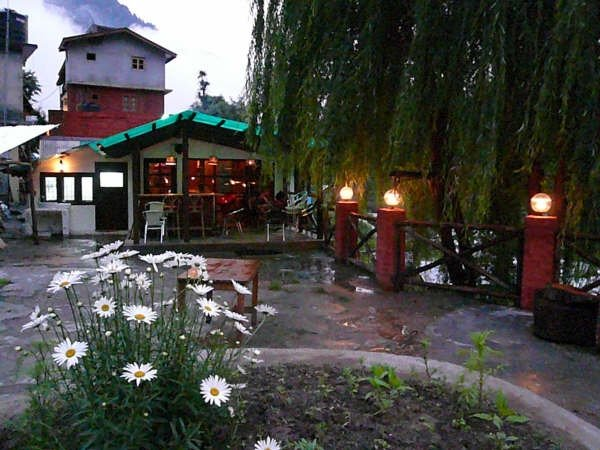 The Lazy Dog Cafe, Best places to eat in Manali, Where to Eat in Manali, cafes in Manali, best place for food in Manali
