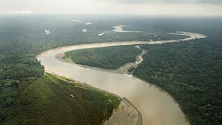 Amazonas,Arrecife, Coral, Brasil, Marañon,