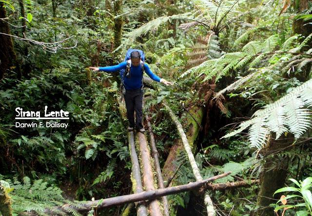 Mt. Apo Trail