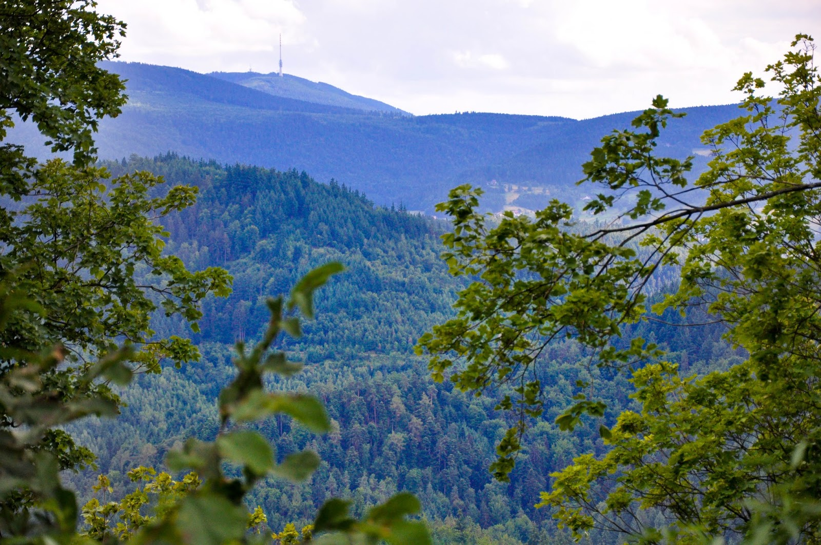 The Black Forest seen from Yburg, Germany